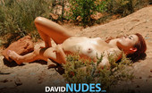 David Nudes Elaine Elaine From Above As If A Monument Of Beauty She Rises Before Me....