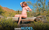 David Nudes Ashley Haven Ashley Haven Young Birth Highly Stylized And Dramatic Art Presentation Of The Nude Pregnant Woman By David....