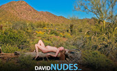 David Nudes 448727 Ashley Haven Ashley Haven Young Birth Highly Stylized And Dramatic Art Presentation Of The Nude Pregnant Woman By David....