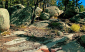 David Nudes Stacy Snow Stacy Snow You Know What You Can Go Stacy Gives Us A Brand New View Of Her Full Body In These Amazing And Vivid Art Nudes Up In The Mountains Of Tuscon With David....