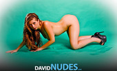 David Nudes Jessica Jessica Cool Love Part 1 David'S Modern Take On The 1950s Pinup Girl!...