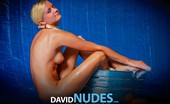 David Nudes Tatyana Tatyana Metal And Plastic 1 ...Before Today My Body Was Useless....
