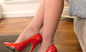 Stiletto Tease When You See A High Heeled Woman Her Curves, Her Figure And Her Walk Are All Sexually Improved By Her Lovely Shoes. No Wonder You Feel The Urge To Love And Kiss Her Heels Showing Your Devotion With Such Passion And Feeling