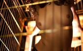 Dani Daniels VIP Dani The Dog Cage Bitch An Amazingly Hot Scene As Dani Daniels A Trapped Bitch Inside A Dog Cage...See Her Struggle And Play With Herself Dani Daniels VIP