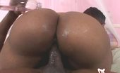 Bend Over Video BendOverVideo P74