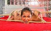 Ebina Models 488907 (XXX) Iris Dark In Bed Tied And Abused Ebina Models