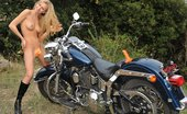 Ero Berlin Lilian Harley Vibration Riding Dildo Ero Berlin