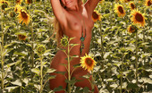 Sweet Nature Nudes Alena Alena Presents Pretty In Flowers Shimmering, Golden, Feeling The Fresh Breeze Caress The Skin...... Sweet Nature Nudes