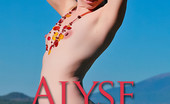 Sweet Nature Nudes Alyse Alyse Presents Playful Nudes Nestled Atop The Arizona Northern Sky, The San Fransisco Peaks Provide Alyse With An Amazing Backdrop To Her Nude Romp.... Sweet Nature Nudes