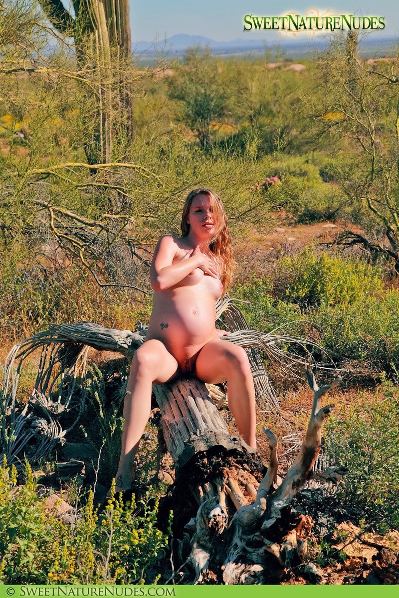 Sweet Nature Nudes 510554 Ashley Haven Ashley Haven Presents Heavy With Child Our DN Model Ashley Is Pregnant And Stops By To Pose Nude For David In The Desert!... Sweet Nature Nudes