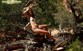 Sweet Nature Nudes 510592 Elaine Elaine Presents Posing For You To Be An Age Old Tree In The Desert...... Sweet Nature Nudes