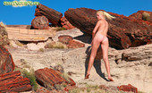 Sweet Nature Nudes Tatyana Tatyana Presents Naked Poses With Petrified Wood See Tatyana Pose Nude Among Rare 20 Million Year Old Petrified Wood In The Painted Desert Of Arizona...Simply Breathtaking!... Sweet Nature Nudes