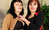 Granny Lesbian Club Martina & Jana Gorgeous Granny Lesbian Martina Makes Jana Cum! Granny Lesbian Club