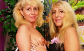 Granny Lesbian Club 520766 Martina & Eva Mature Eve Bangs Martina'S Pussy With Her Favorite Strap-On Granny Lesbian Club
