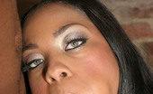 Ebony Ass Porno 522813 Sultry Ebony Dream Working A Black Schlong With Her Lips Before Taking It In Her Rear Ebony Ass Porno