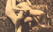 Retro Porn Archive 531232 Retro Porn Archive