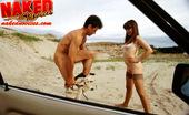 Naked Novices Naked Novices