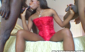 Black Reign X 540863 Mahlia Horny Mahlia In Violent Threesome Sex With Two Studs Black Reign X