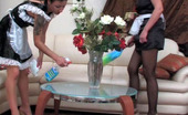 Pantyhose 1 Benett & Subrina Nasty French Maids In Soft Silky Pantyhose Getting To Hot Strap-On Fucking Pantyhose 1