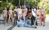 Orgy World Girls White Chicks And Big Black Dicks Orgy World Girls