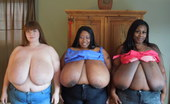 Divine Breasts Lexxxi Cotton Ms Diva BBW Boobs Divine Breasts