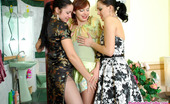 Pantyhose For Ladies Laura Three Lesbian Babes Make Pyramid While Sliding Their Hands Into Shiny Hose Pantyhose For Ladies
