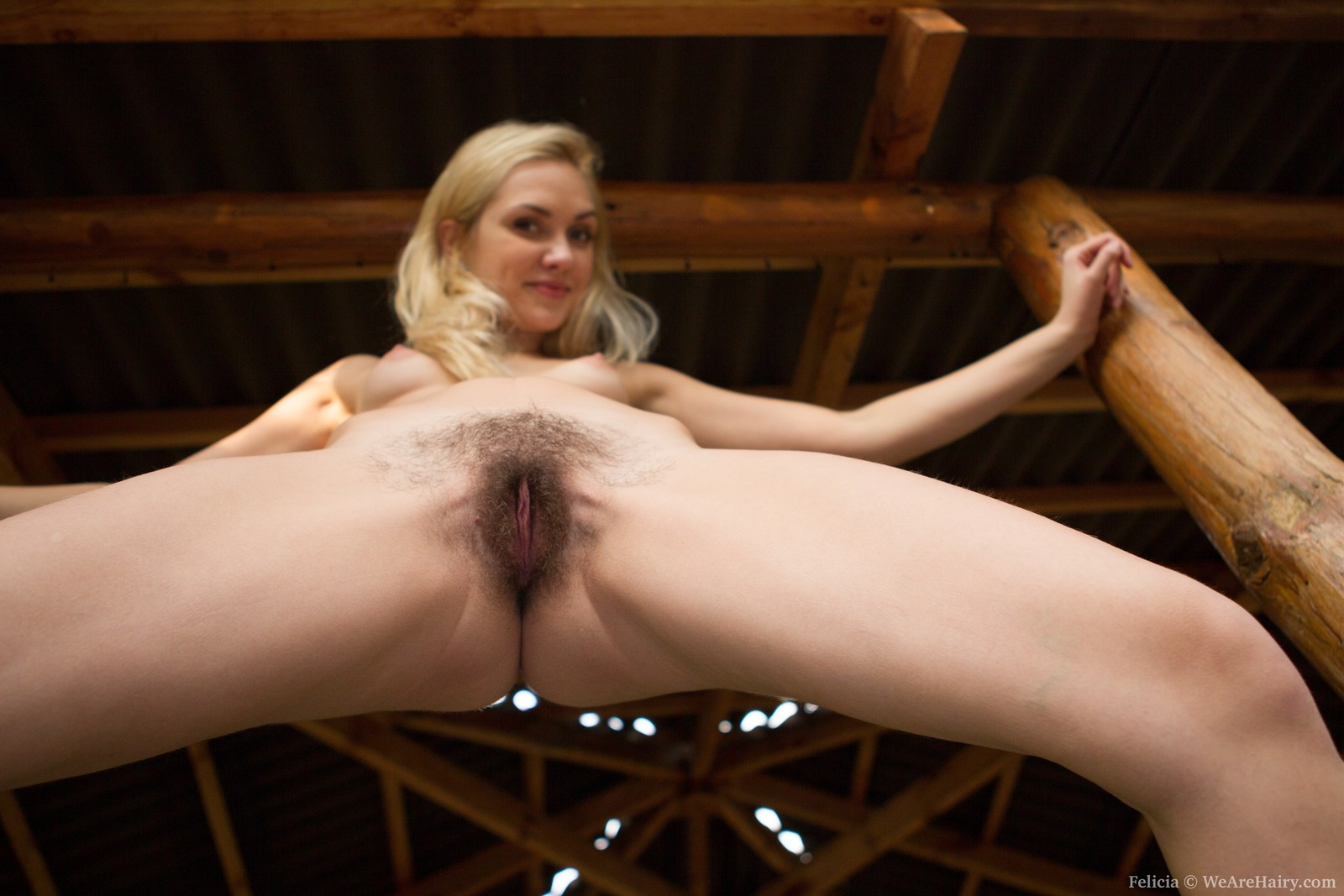 Nika Bank Ivan Damm Porno we are hairy felicia hairy girl felicia outside in only blue